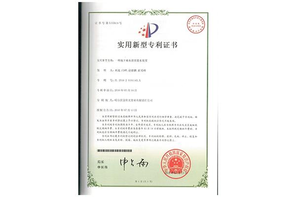 实用新型专利11